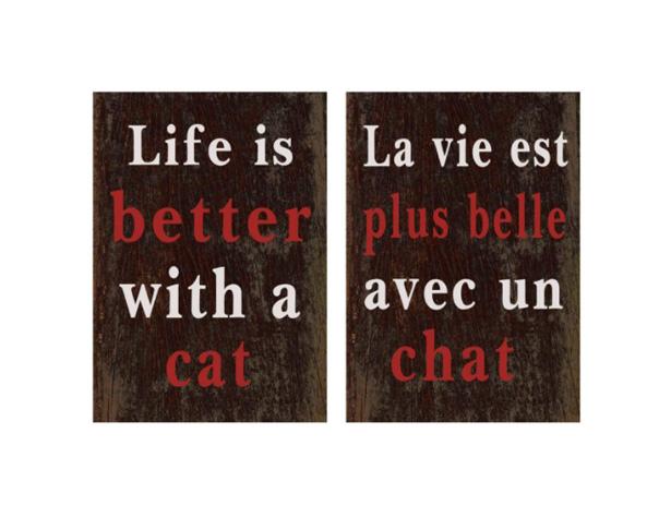 La vie est plus belle avec un chat