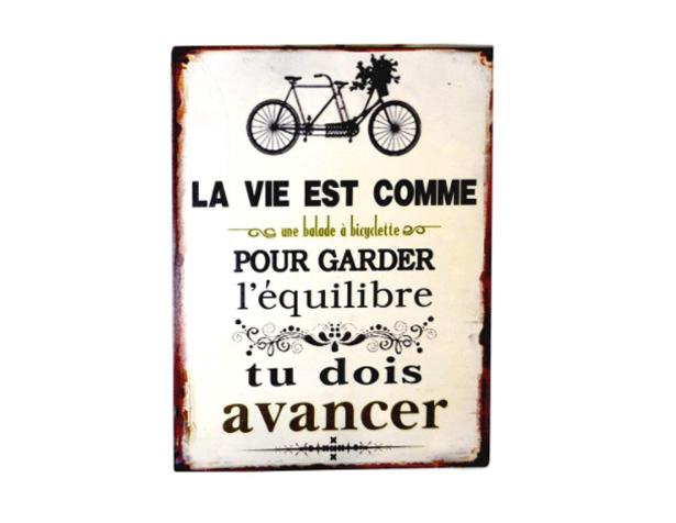 La vie est comme une balade à bicyclette, pour garder l'équilibre, tu dois avancer