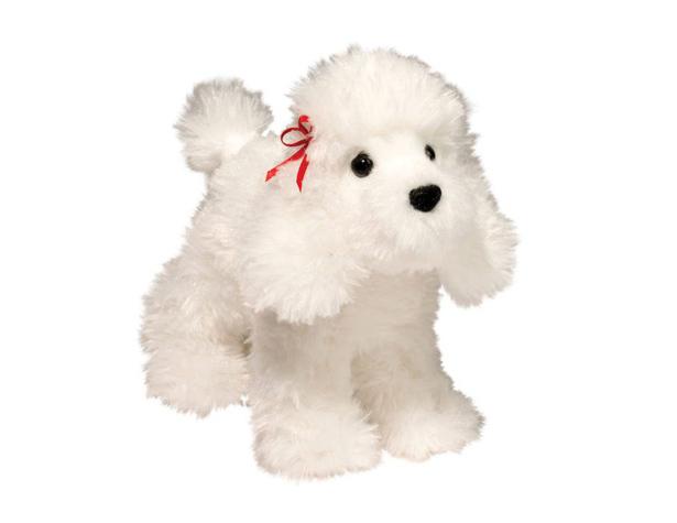 Caniche blanc Gina